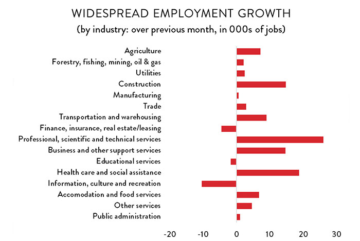 Graph: Widespread Employment Growth